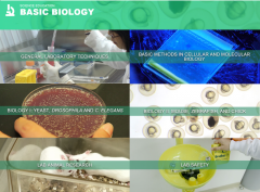 Journal of visualized experiments – JoVE - Science Educational Database - Biology II, Mouse, Zebrafish and Chicks